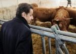 sarko et la vache.jpg